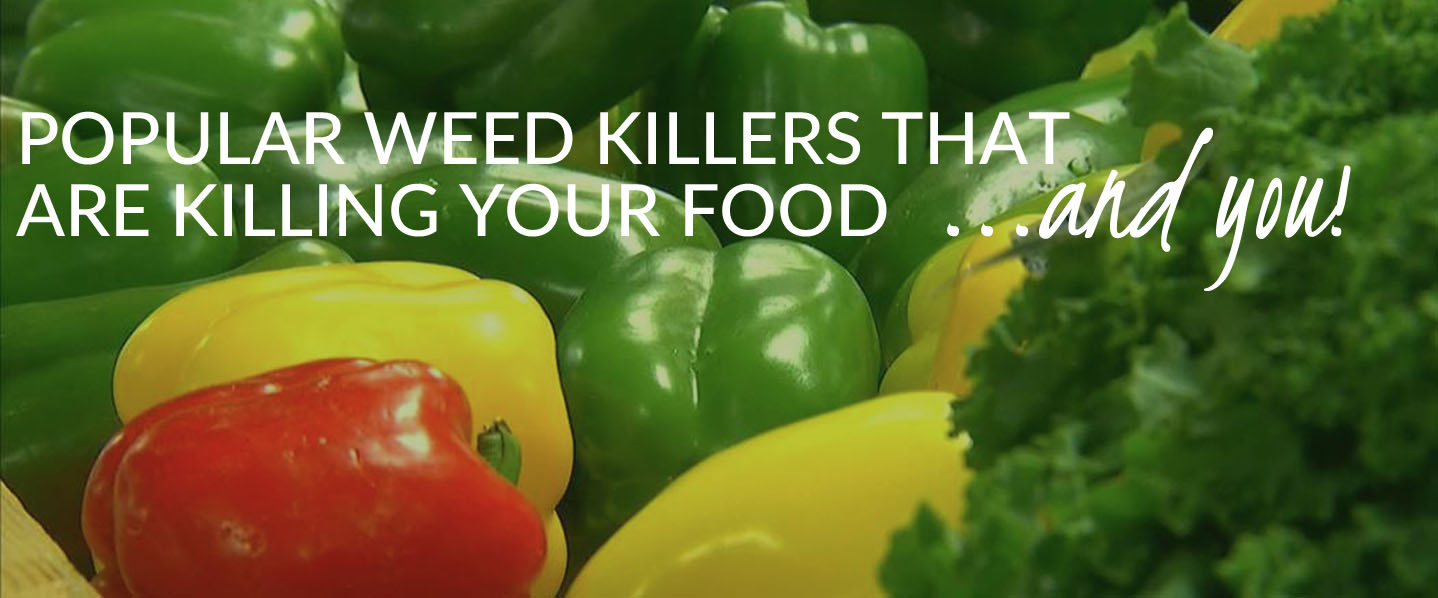 Popular weed killers that are killing your food, and you, one nutrient at a time.